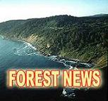 FOREST NEWS